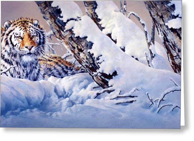 """""""snow Tree Prints"""" Greeting Cards - Sovereign In Winter Greeting Card by Kathleen V  Butts"""