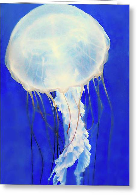 Spaceship Of The Sea Greeting Card by Diana Angstadt