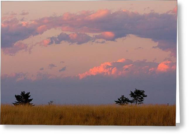 Spacious Skies Amber Waves Of Grain Ll Boulder County Greeting Card by James BO  Insogna