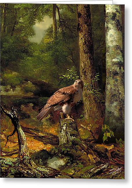 Spades Red-tailed Hawk Greeting Card