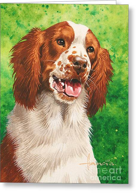 Spaniel Greeting Card by John Francis