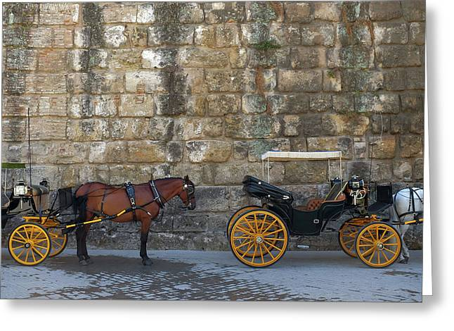 Spanish Carriage Greeting Card
