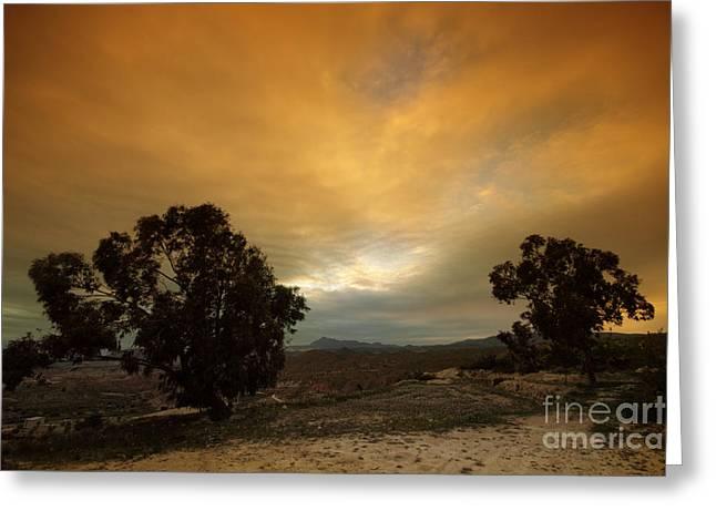 Spanish Landscapes Greeting Card by Angel  Tarantella