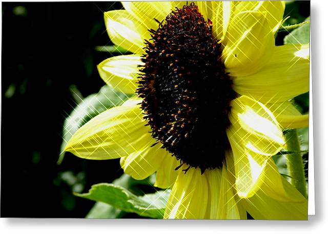 Sparkle Sunflower Greeting Card