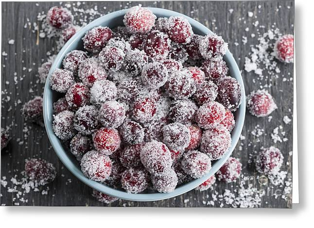 Sparkling Cranberries Greeting Card by Elena Elisseeva