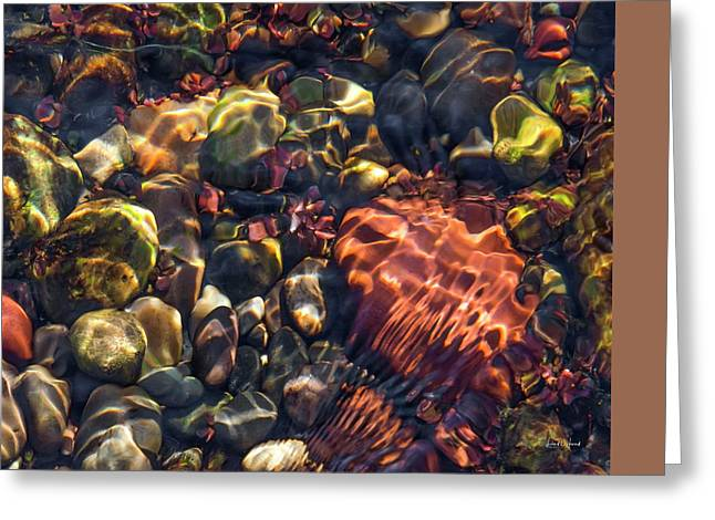 Sparkling Creek Bed 4 Greeting Card by Leland D Howard