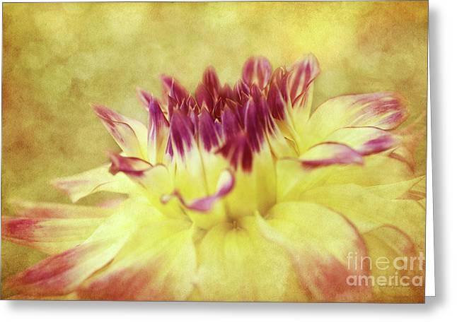 Sparkling Dahlia Greeting Card