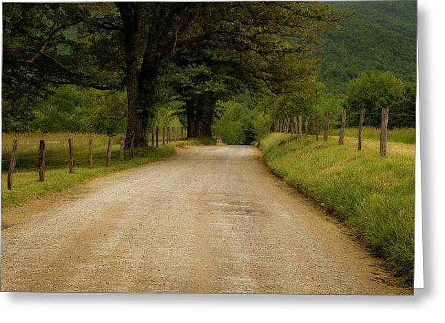 Sparks Lane - Cades Cove Greeting Card by Andrew Soundarajan