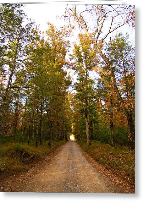 Greeting Card featuring the photograph Sparks Lane by Bob Decker
