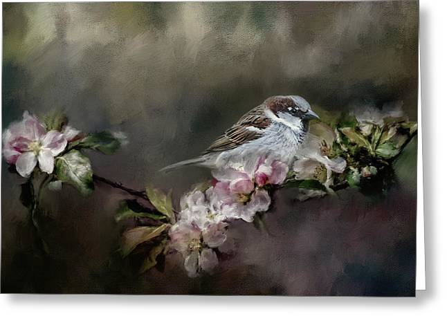 Sparrow In The Garden Greeting Card by Jai Johnson