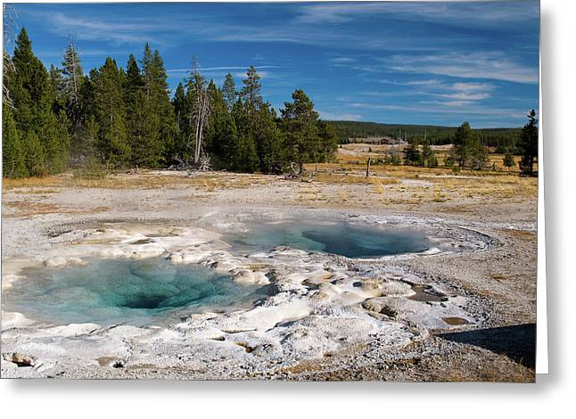 Spasmodic Geyser Greeting Card