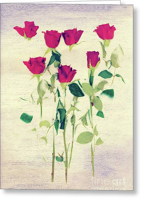 Special Day Greeting Card by Svetlana Sewell
