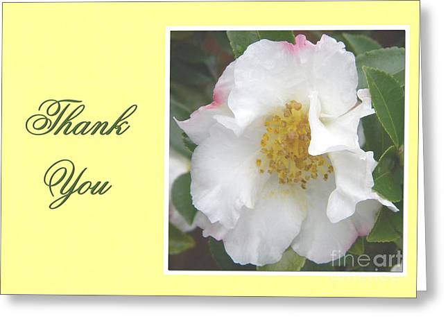 Greeting Card featuring the digital art Special Thank You by JH Designs