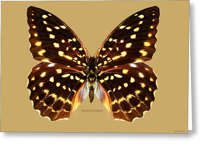 Speckled Hen Butterfly Greeting Card by Walter Colvin