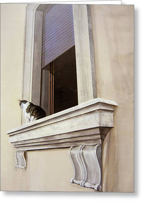 Spello Cat Greeting Card by Michael Bolton