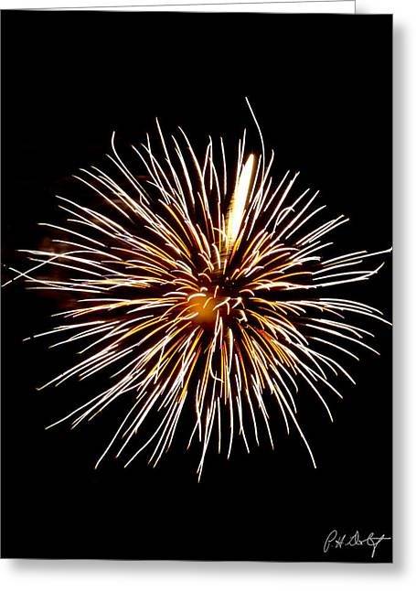 Spider Ball Greeting Card by Phill Doherty