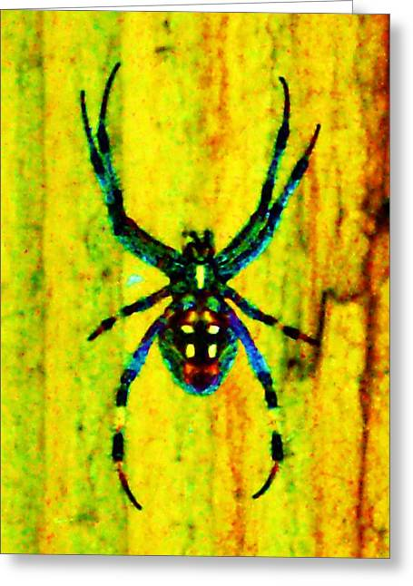 Spider Greeting Card by Daniele Smith