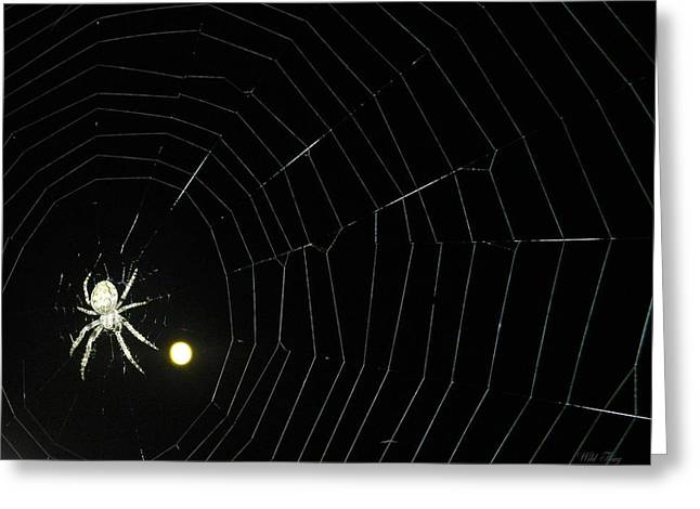 Spider Moon Greeting Card