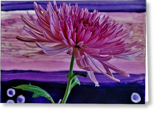 Greeting Card featuring the photograph Spider Mum With Abstract by Marsha Heiken