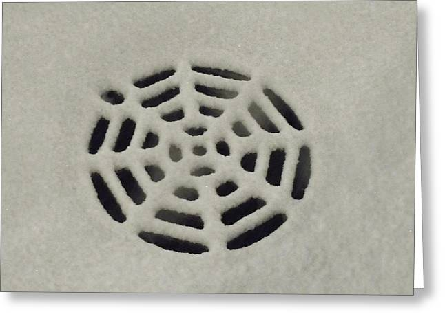 Spiderweb In The Snow Greeting Card