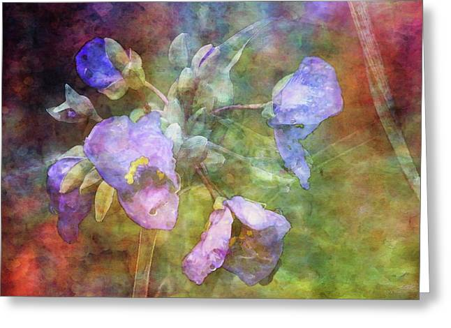 Spiderwort 1398 Idp_2 Greeting Card
