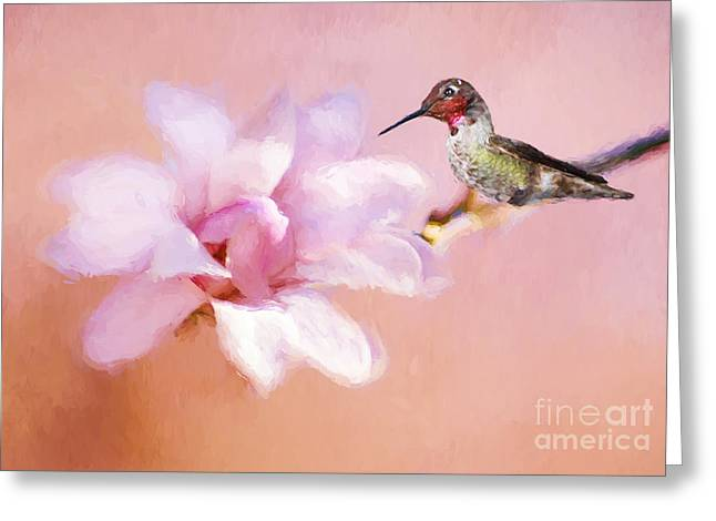 Sping Hummer Greeting Card