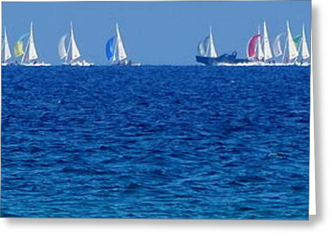 Spinnakers On The Horizon Greeting Card