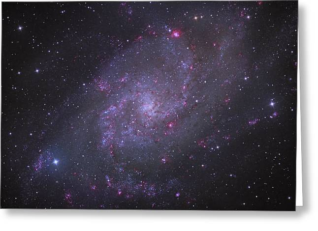 Spiral Galaxy M 33 Greeting Card by Brian Peterson