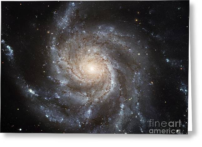 Spiral Galaxy M101 Greeting Card by NASA ESA Space Telescope Science Institute