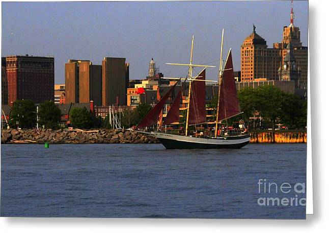 Spirit Of Buffalo Greeting Card by Kathleen Struckle