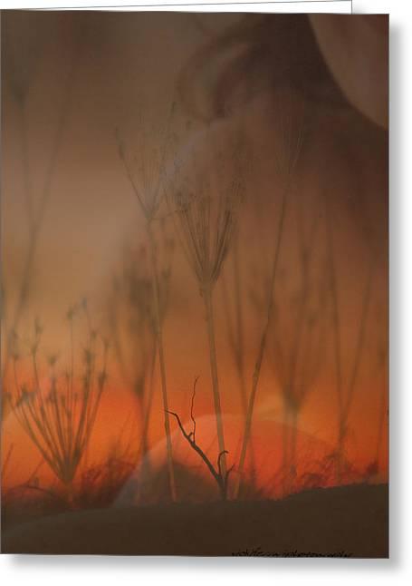 Spirit Of The Land Greeting Card by Vicki Ferrari