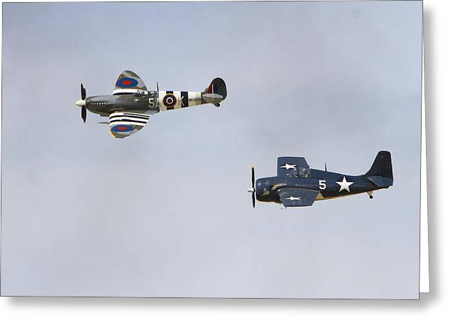 Spitfire And Wildcat Greeting Card by Shoal Hollingsworth