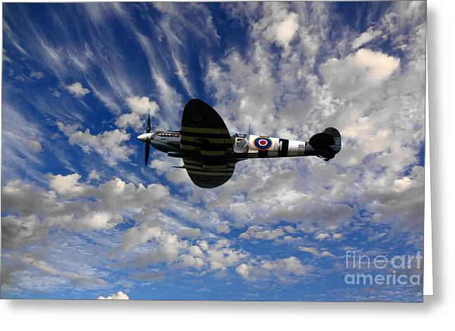 Spitfire Skies Greeting Card by Nichola Denny