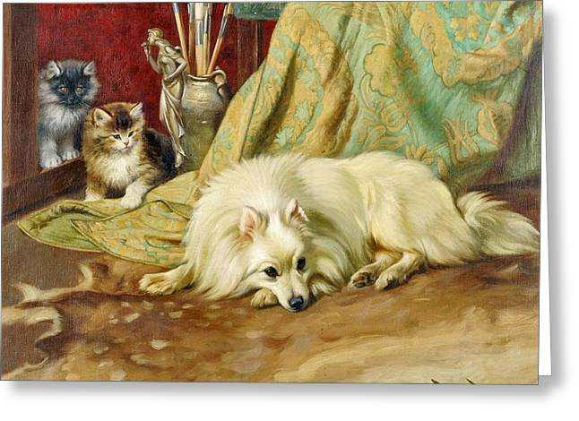 Spitz Dog With Two Kittens Beside  Greeting Card by MotionAge Designs