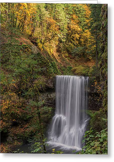 Splash Of Autumn Greeting Card by Loree Johnson