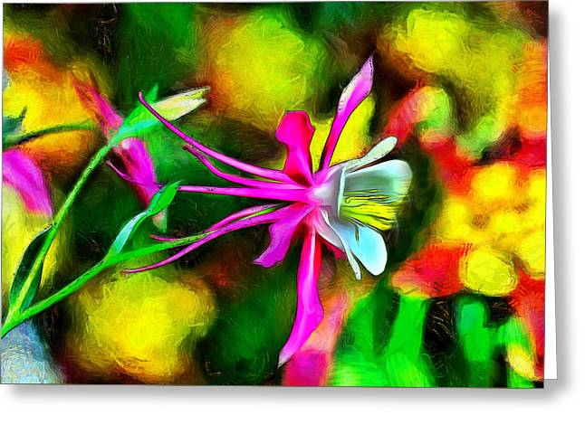 Columbine Greeting Card by Jean-Marc Lacombe