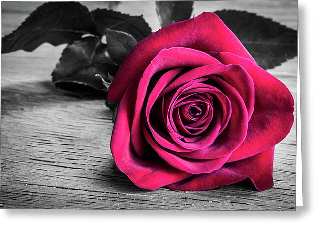Splash Of Red Rose Greeting Card