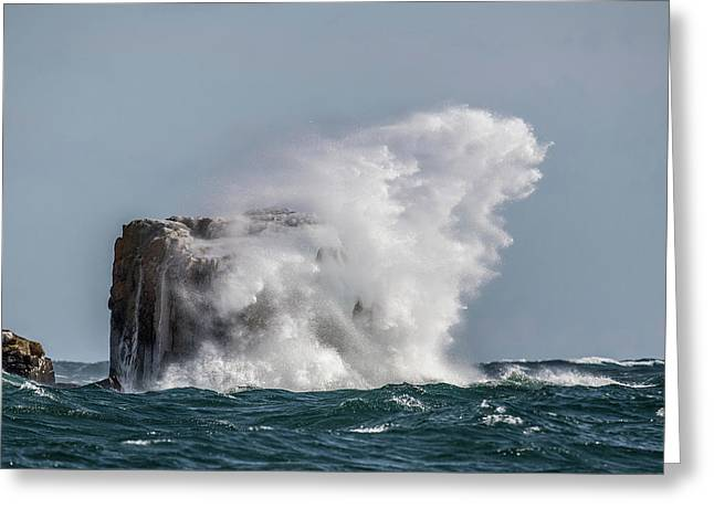 Greeting Card featuring the photograph Splash by Paul Freidlund