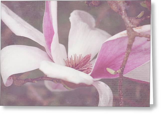 Greeting Card featuring the photograph Splendid Tulip Tree  by Toni Hopper
