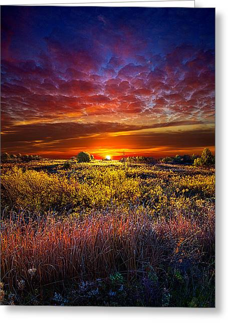 Autumn Photographs Greeting Cards - Splendiferous Greeting Card by Phil Koch