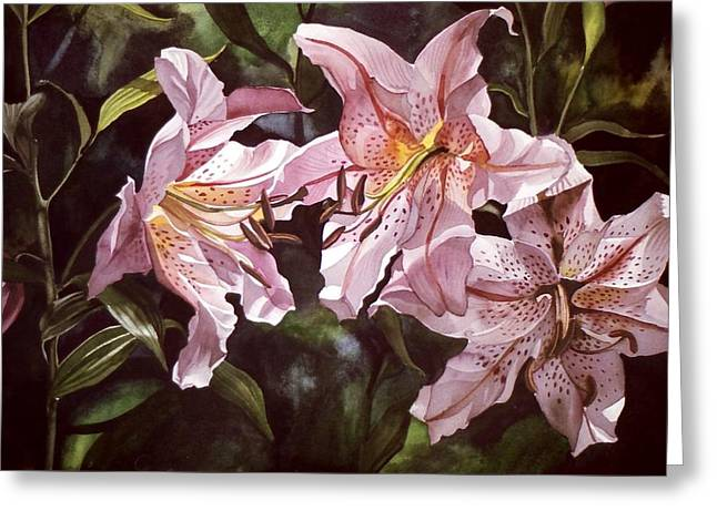 Splendor In Pink Greeting Card by Alfred Ng