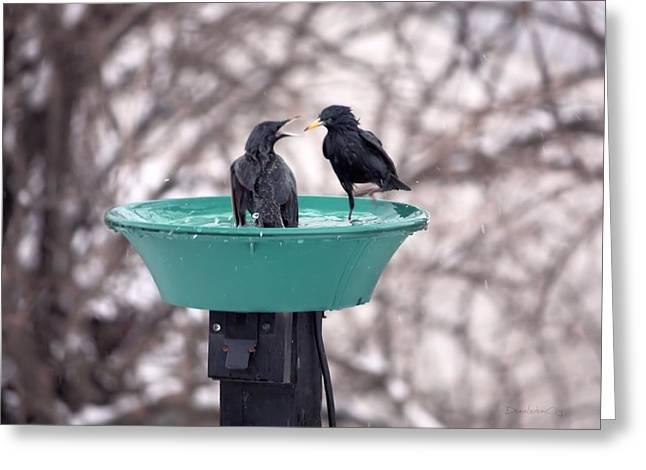 Splish Splash Let's Take A Bath 3 Greeting Card