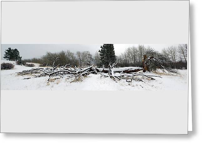 Greeting Card featuring the photograph Split Personality - Panorama by Shane Bechler