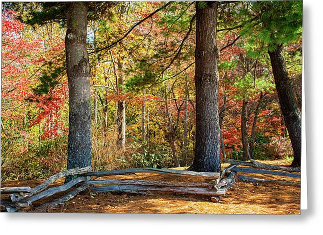 Split Rail Fence And Autumn Leaves Greeting Card