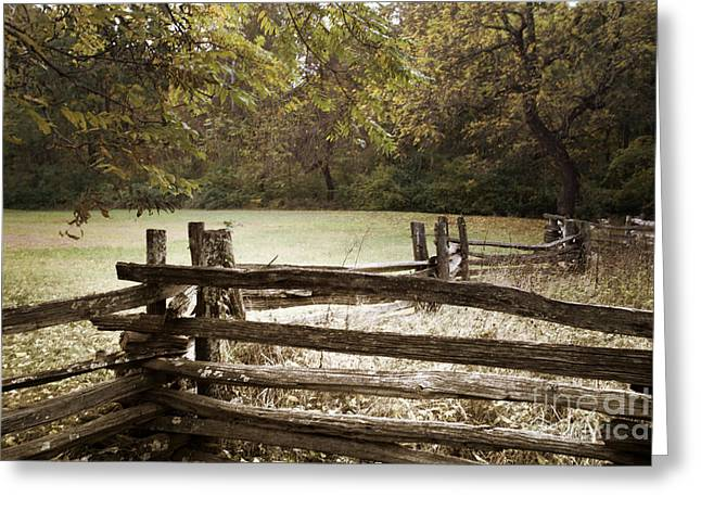 Split Rail Fence Greeting Card by Tom Gari Gallery-Three-Photography