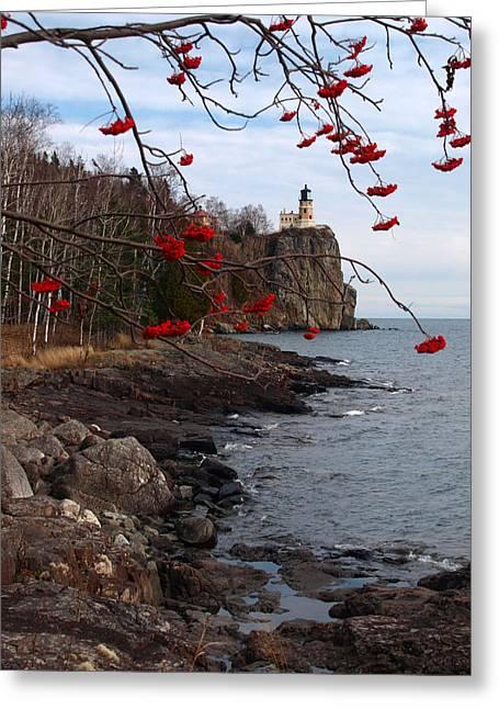 Split Rock Berries Greeting Card by James Peterson