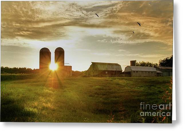 Split Silo Sunset Greeting Card