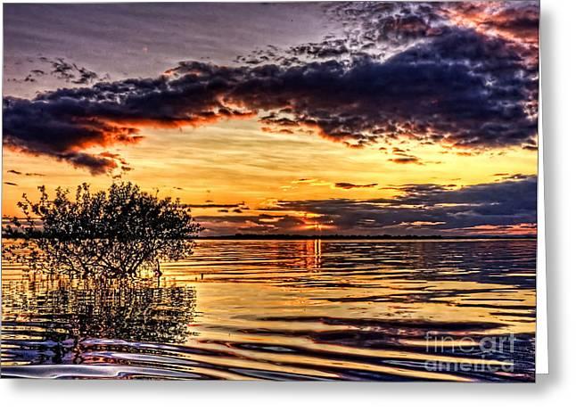 Splitting Sun Greeting Card by Kim Shatwell-Irishphotographer