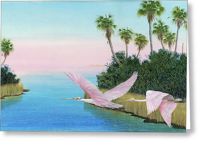 Kevin Brant Greeting Cards - Spoonbills In Flight Greeting Card by Kevin Brant