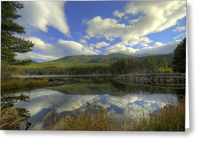 Sprague Lake 2 Greeting Card by Matthew Angelo